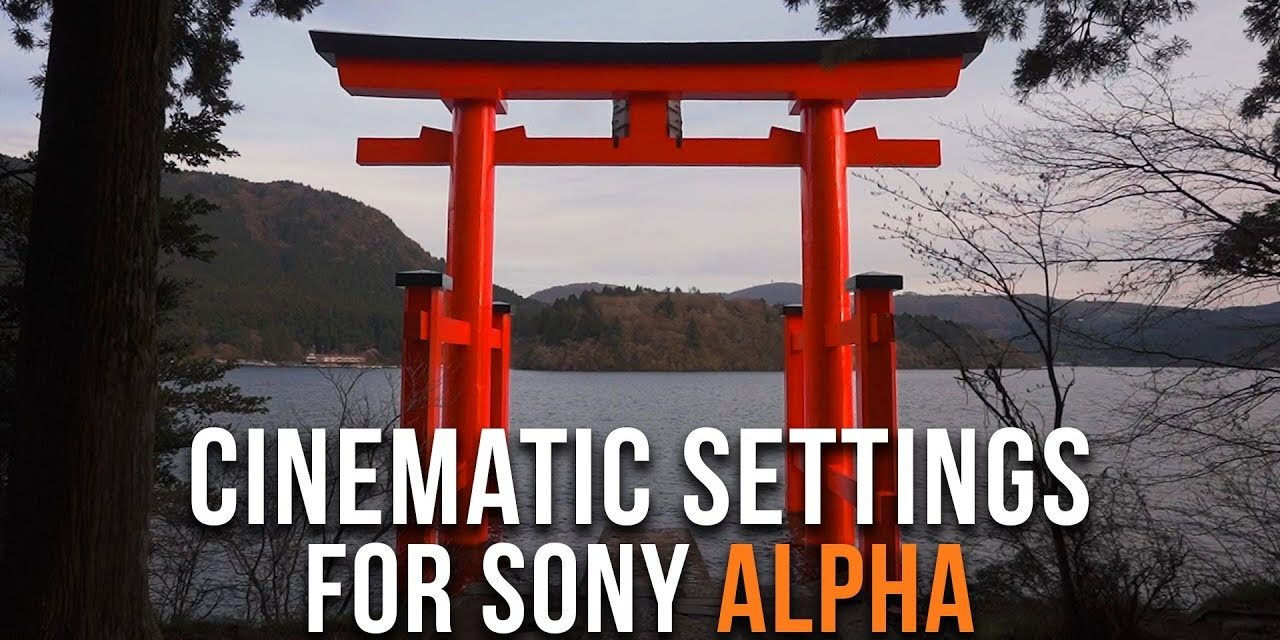 Best Cinematic Settings For Sony alpha Cameras - The Valuable Friends