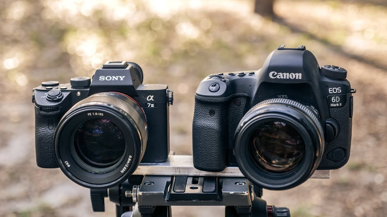 Sony A7iii Vs Canon 6d Mark Ii The Valuable Friends
